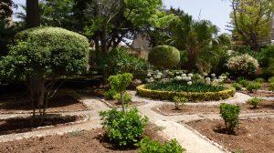 Palazzo Parisio - Garden, Naxxar
